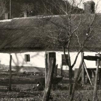Lakóház, istálló, pajta. Nemesvita (Balatoni Múzeum, Fotótár)