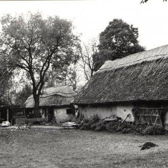 Gazdasági udvar, istálló, pajta, baromfiól és disznóól Gyenesdiás (Balatoni Múzeum, Fotótár)