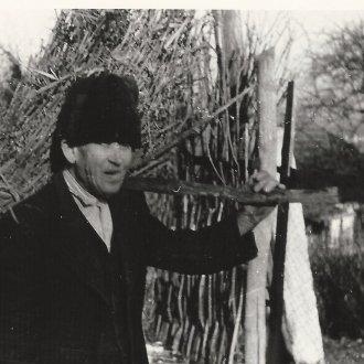 Venyigét hozó ember - Nemesvita, 1965