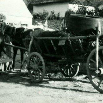 Hordót szállító lovas kocsi - 1965