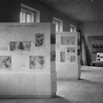 Hajdanvolt múzeumi séták nyomában - Első rész