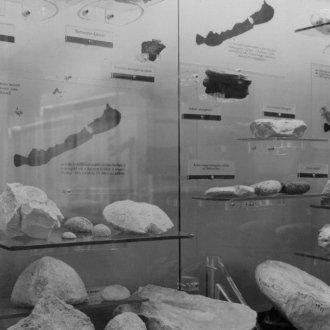 Fotó a korabeli kiállítási katalógusból - részlet az I. teremről
