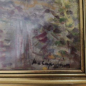 Halápy János emlékszoba - állandó kiállítás a Balatoni Múzeumban