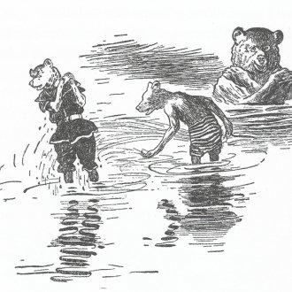 Locsolkodás a sekély vízben