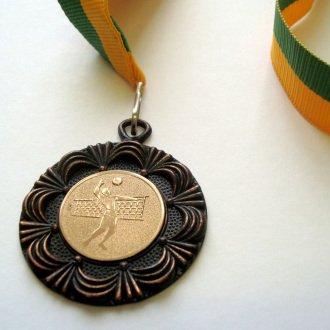 5. kép - A fiú röplabda csapat 2003-as megyei döntőn nyert bronzérme